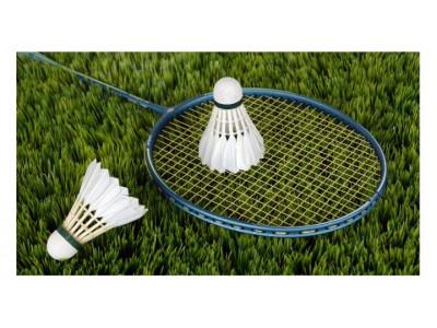 Badminton/Boxe